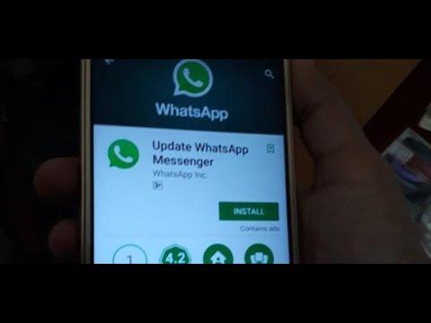 Facebook-Tochter: WhatsApp erhöht Mindestalter für Nutzer auf 16 Jahre