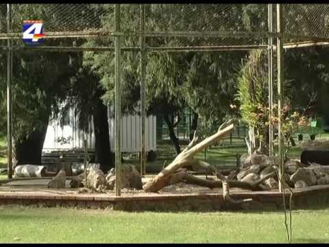 Comienzan obras para construir jardín botánico donde funcionaba el zoológico