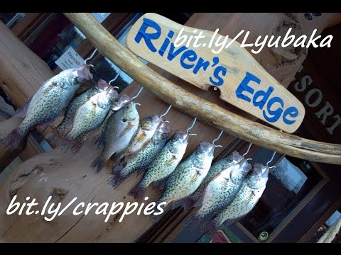 Crappie Fishing And Bluegill Action Non-Stop Over One Hour