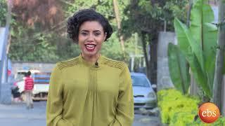 ኢትዮ ቢዝነስ በረመዳን የመርካቶ ገበያ እና በሶላር ስለሚሰራዉ ጀነሬተር/Ethio Business Season 3 Ep 4