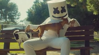 Video Marshmello - Ritual (feat. Wrabel) [Official Music Video] MP3, 3GP, MP4, WEBM, AVI, FLV Mei 2018