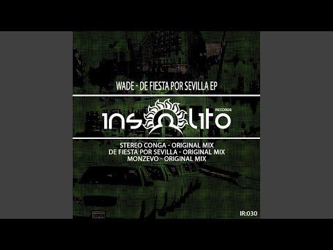 Stereo Conga (Original Mix)