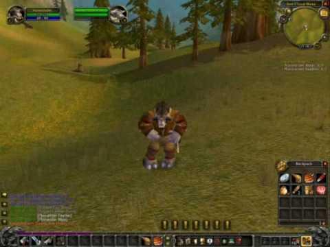 Видео World Of Warcraft gameplay