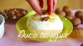Queso de yogurt