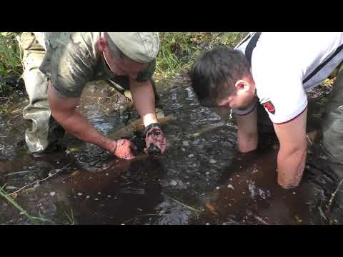 Подъем трех бойцов из болота