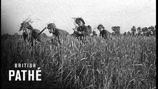 Caen France  City new picture : Battle Of Caen (1944)