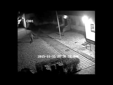 Wideo1: Zniszczy� lamp� i drzewko na terenie leszczy�skiego przedszkola