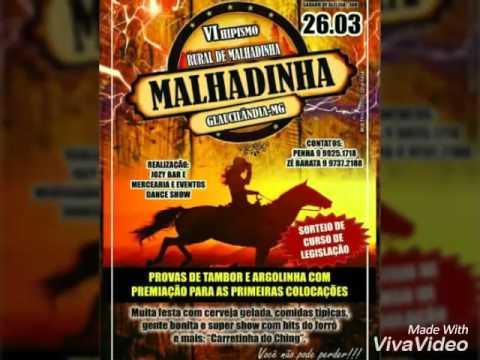 Cavalgada Em Glaucilandia
