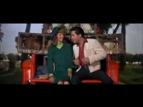 Tekst piosenki Elvis Presley - Old McDonald po polsku