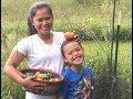 Homestead Family Harvesting Fresh Indian Summer Garden Vegetables