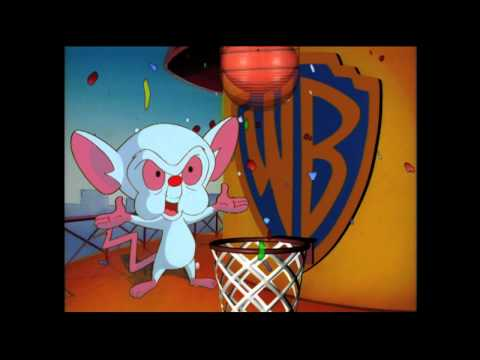 WB - These are bumpers and IDs from the early days of Kids' WB! If you like my Kids' WB! posts, please vote for me at http://www.streamingmedia.com/producer/Chall...