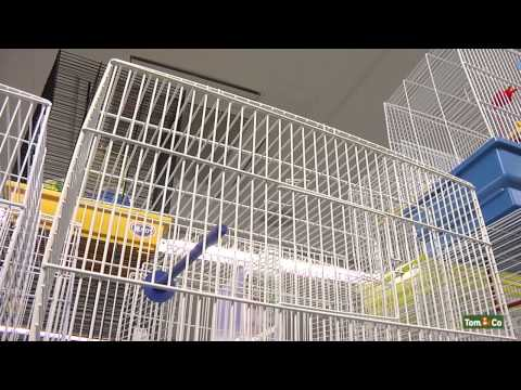 La cage - Mon oiseau - Tom&Co