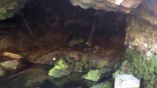 La Grotte des Laveuses à Royat