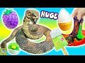 Cutting Open HUGE Snake Toy! Squishy Blind Box & Recycled Squishy! Doctor Squish