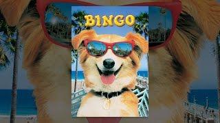 Video Bingo MP3, 3GP, MP4, WEBM, AVI, FLV Agustus 2018