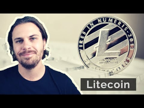 Litecoin   What is it, and what is the investment performance? Analysis of historical ROI and RFG video