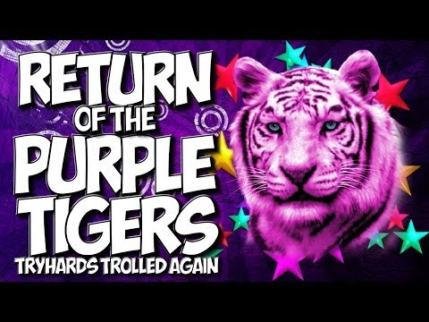 """COD GHOSTS: RETURN OF THE PURPLE TIGERS! CHAPTER 2 """"TRYHARDS TROLLED"""" AGAIN!! [HILARIOUS]"""