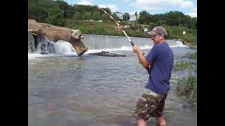 Video River Flathead Catfishing MP3, 3GP, MP4, WEBM, AVI, FLV Desember 2017
