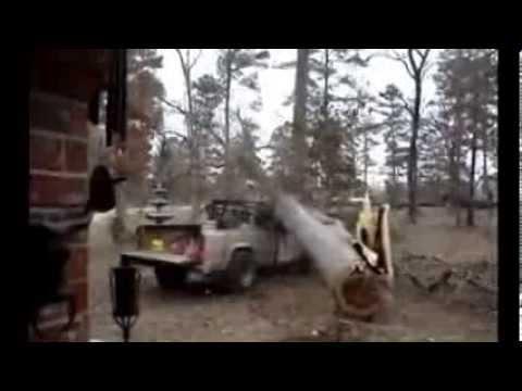 boscaioli improvvisati... quanti disastri