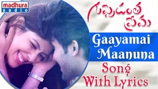 Gaayamai Maanuna Song Lyrics From Guppedantha Prema Sai