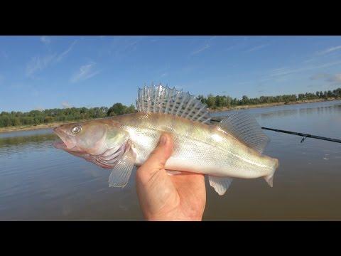 рыбалка сетями на реке иртыш