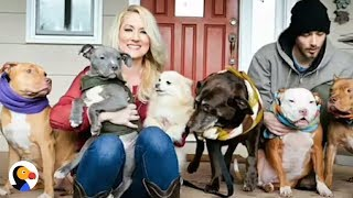 Woman Who Saved OVER 100 Dogs Surprised By SPECIAL Pup  This woman has fostered hundreds of dogs — but this little guy ...
