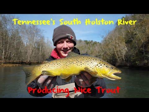 Trout Fishing Tennessees Holston River_Horg�szat vide�k