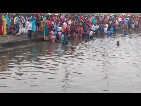 Video Rajdhanwar chhath ghat  2017 ... download in MP3, 3GP, MP4, WEBM, AVI, FLV January 2017