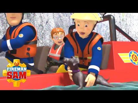 Fireman Sam   Keep Your Dog Safe This Summer   Fireman Sam Animal Safety Shorts   Videos For Kids