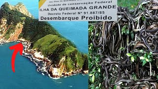 Secluded Island Contains A Creature So Dangerous That People Are Banned From Visiting by Did You Know Animals?