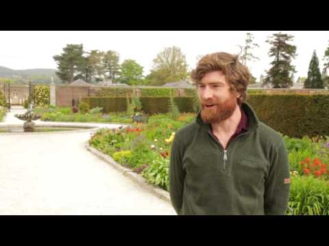 Interview with Alex Slazenger, Head Gardener at Powerscourt Estate and Gardens