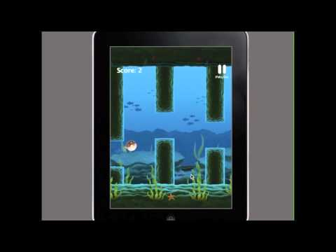 Video of Puffy Blowfish