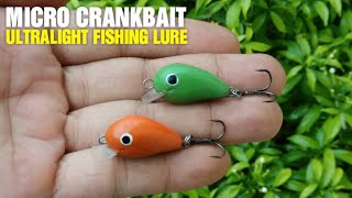 Video Making Ultralight Fishing Lure - Micro Crankbait MP3, 3GP, MP4, WEBM, AVI, FLV November 2018