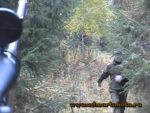 Elk hunt in Udmurtia 2010
