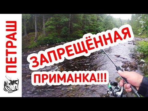 Рыбалка в ДИКИХ МЕСТАХ! Давно я так не кайфовал! День третий (видео)