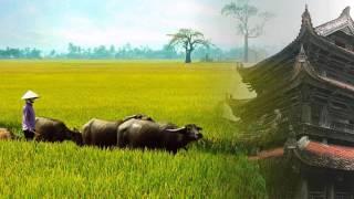 Những ca khúc hay nhất về Quê hương Thái Bình