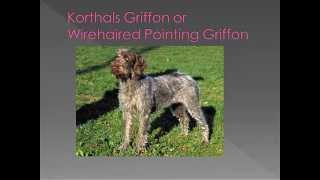 Dog breed name cross reference part 7-K
