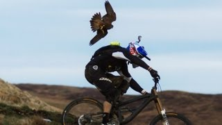 Gee Atherton gets hunted by a Peregrine Falcon - YouTube
