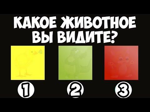 КАКОЕ ЖИВОТНОЕ ВЫ УВИДЕЛИ - DomaVideo.Ru
