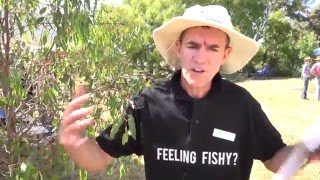 Yass Australia  city pictures gallery : Yass River Australia - Feeling Fishy Field Day