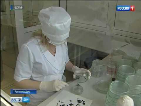 18 тысяч случаев заражения сельхозпродукции выявили на Дону