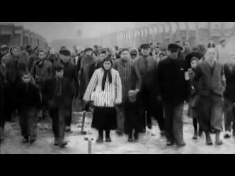 Шаги истории - 27 января (Освобождение Освенцима)