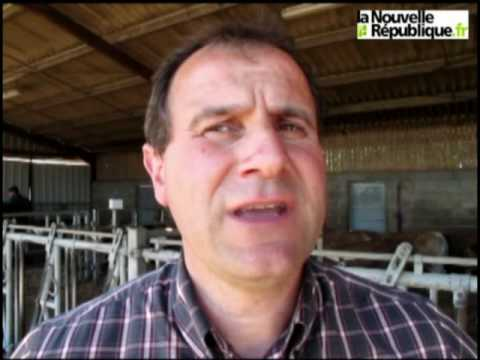 Parthenay : Marché aux bestiaux et Parthenaise : même combat