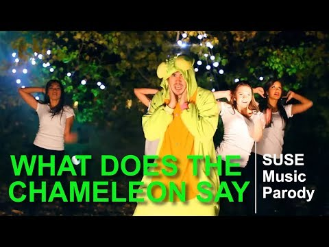 """What does the chameleon say"" (SUSE, 2013)"