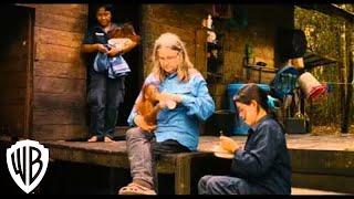 Nonton Born to Be Wild Trailer Film Subtitle Indonesia Streaming Movie Download