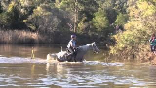 Saint Albans Australia  City pictures : Horse Endurance Ride St Albans Shahzada NSW Australia 400 Km and 120 km Michael Cummins