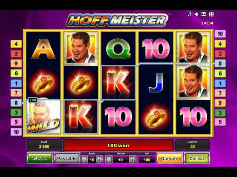 Hoffmeister Slot - Mega Big Win Bonus at D-Best Casino