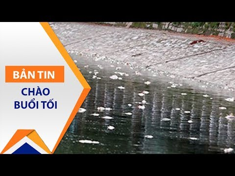 Bí ẩn hồ Hoàng Cầu | VTC1 - Thời lượng: 100 giây.