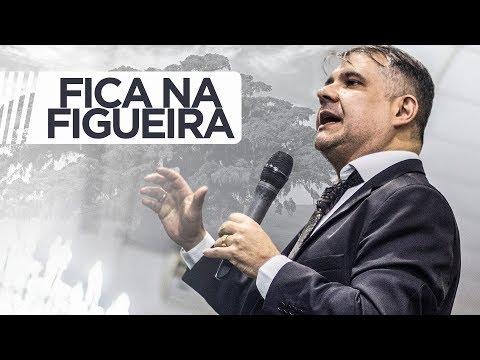Ap Rodrigo Salgado 2018 I Tema: Fica na figueira