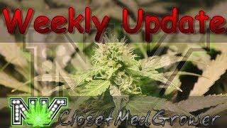 Weekly Update 8/10/2017 by  NVClosetMedGrower